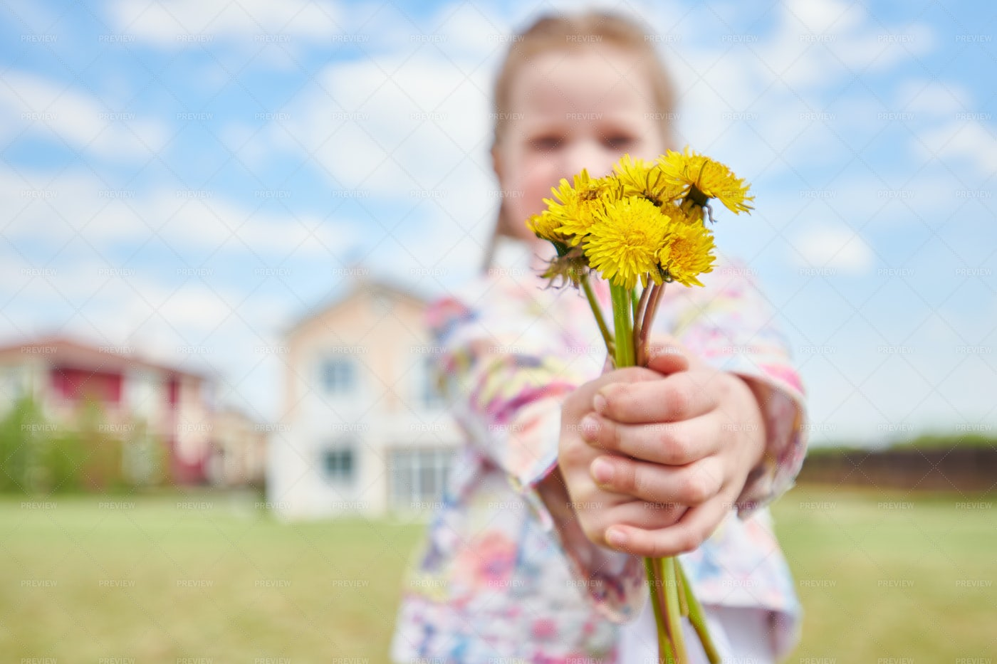 Girl With Bouquet Of Dandelions: Stock Photos