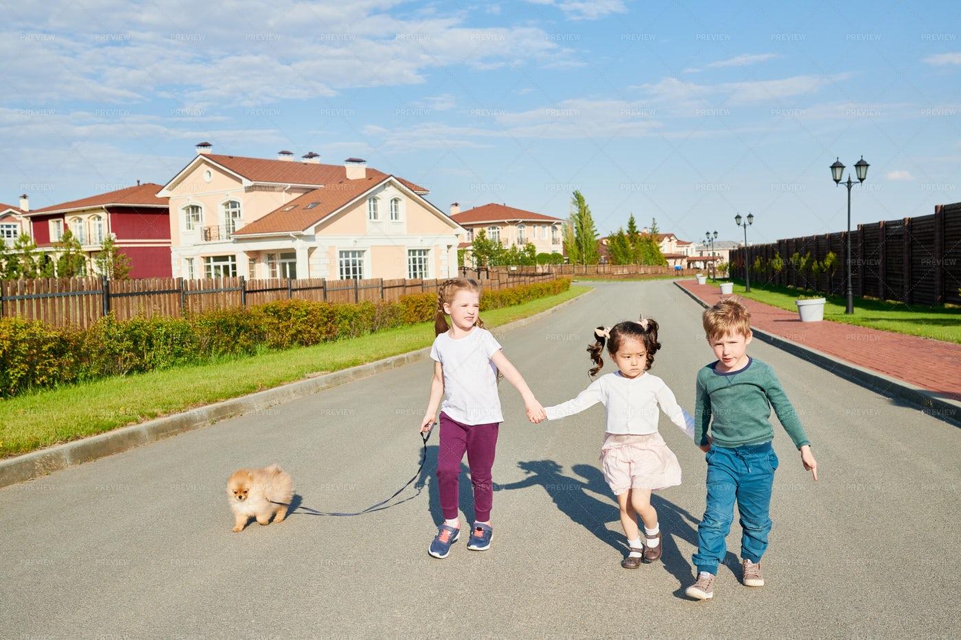 Children Walking Dog: Stock Photos