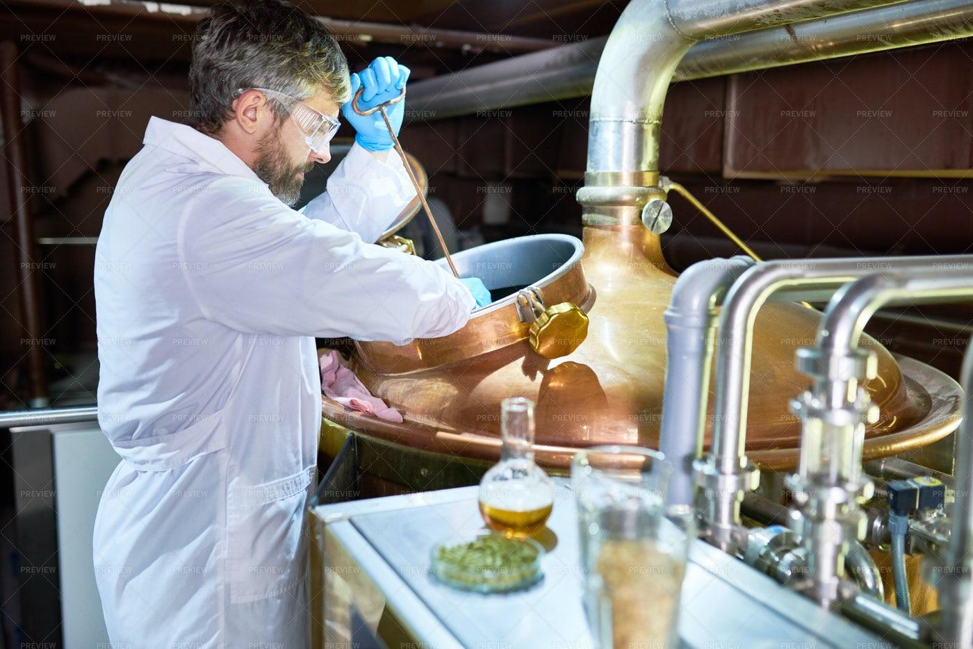 Process Of Beer Fermentation: Stock Photos