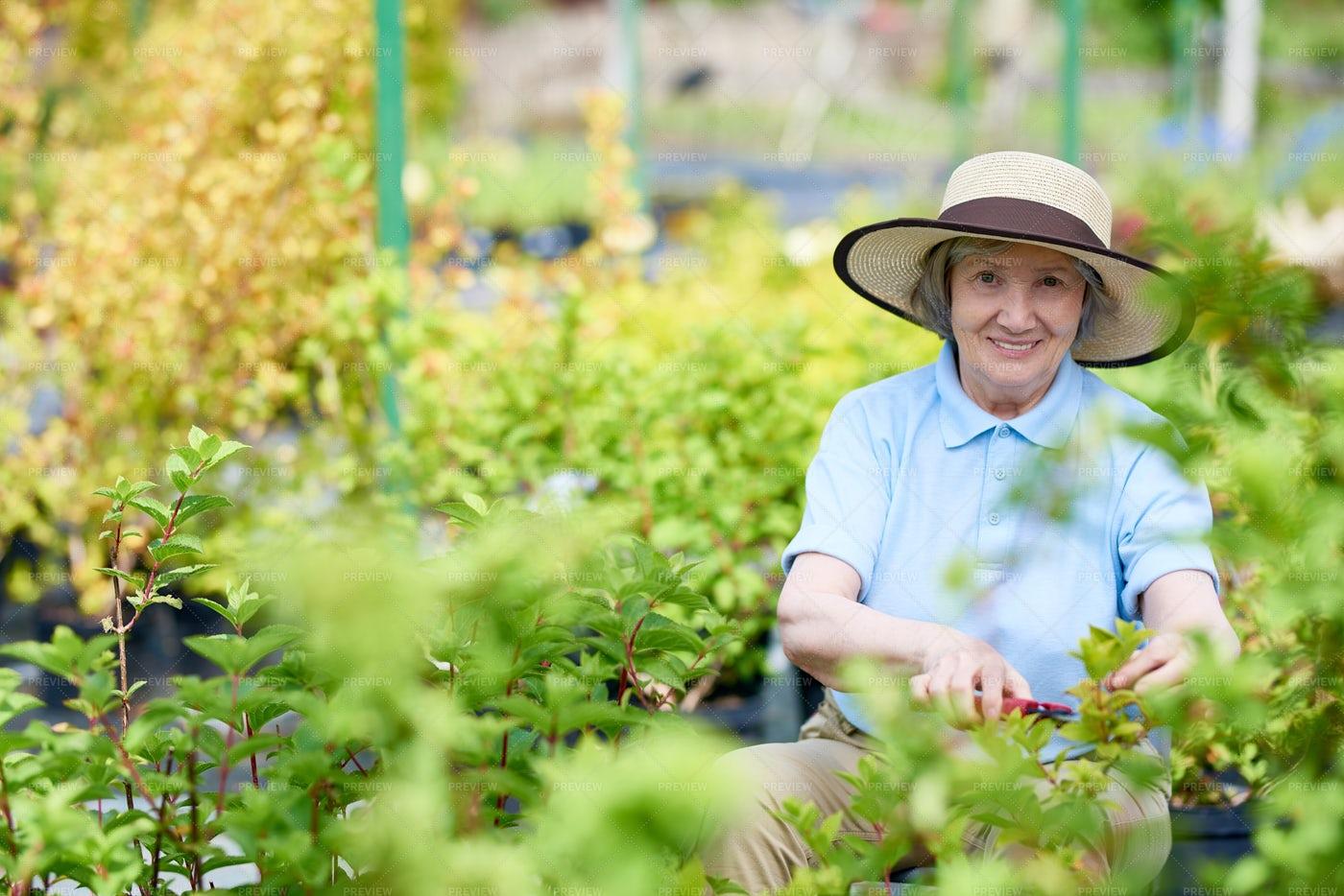 Happy Senior Woman Enjoying ...: Stock Photos