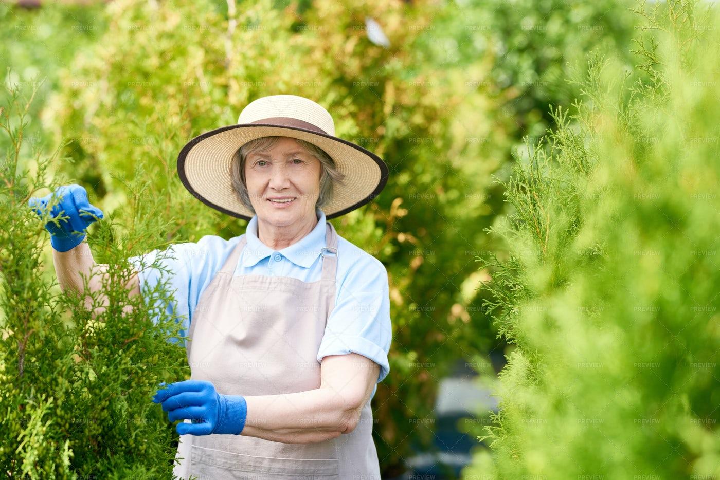 Happy Old Woman Posing In Garden: Stock Photos