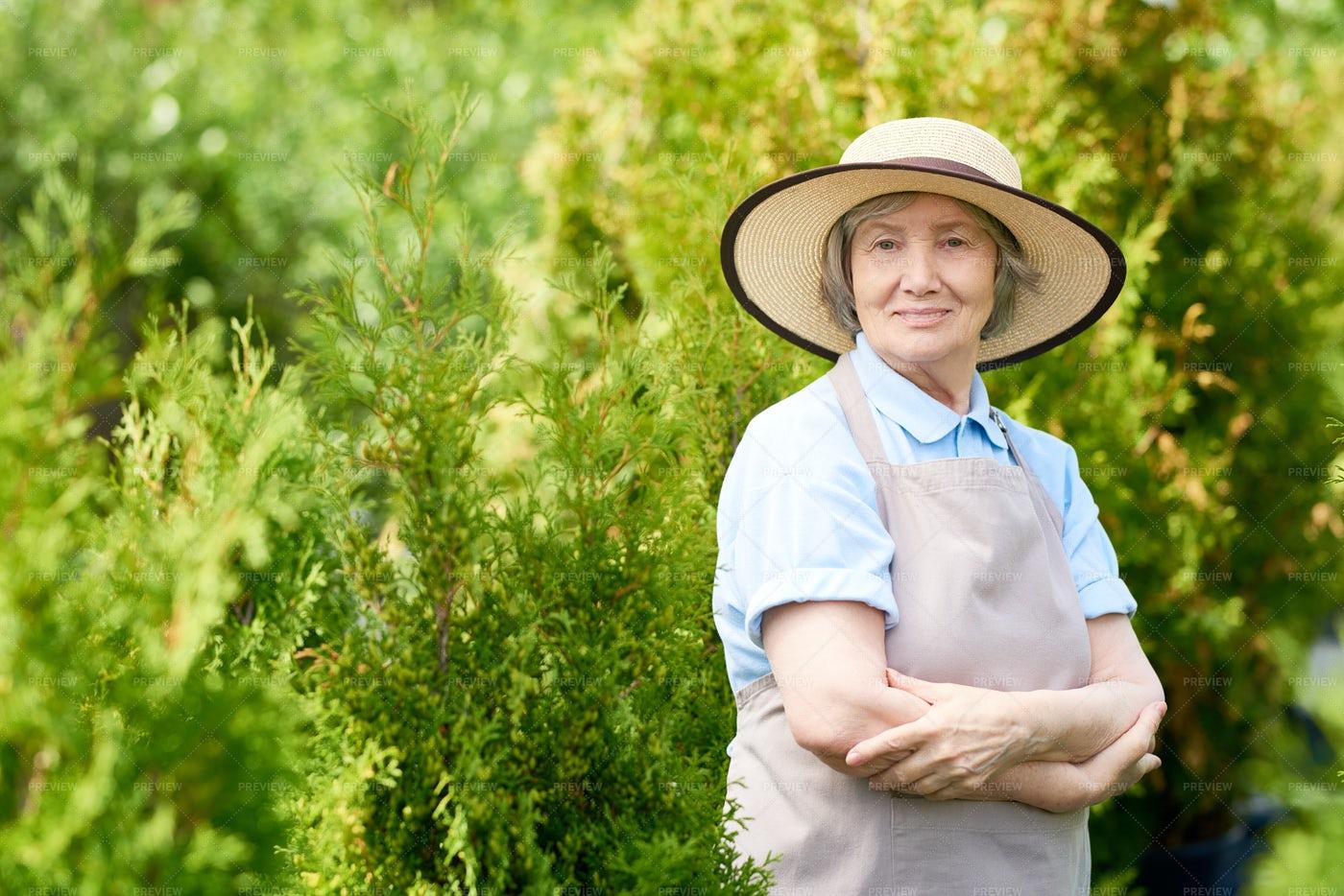 Happy Senior Woman Posing In Garden: Stock Photos