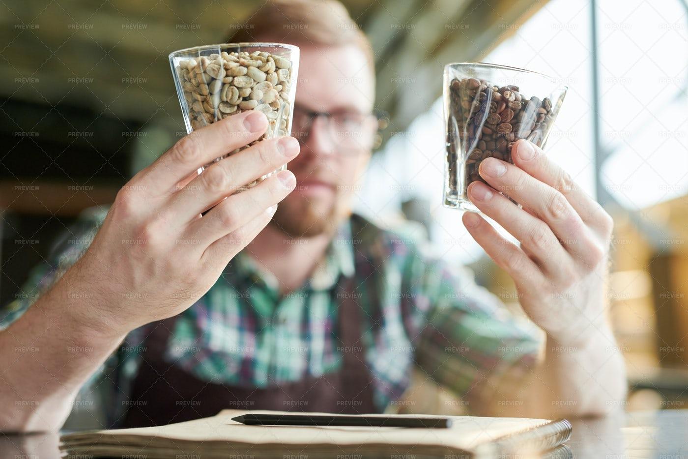 Barista Examining Coffee Beans: Stock Photos