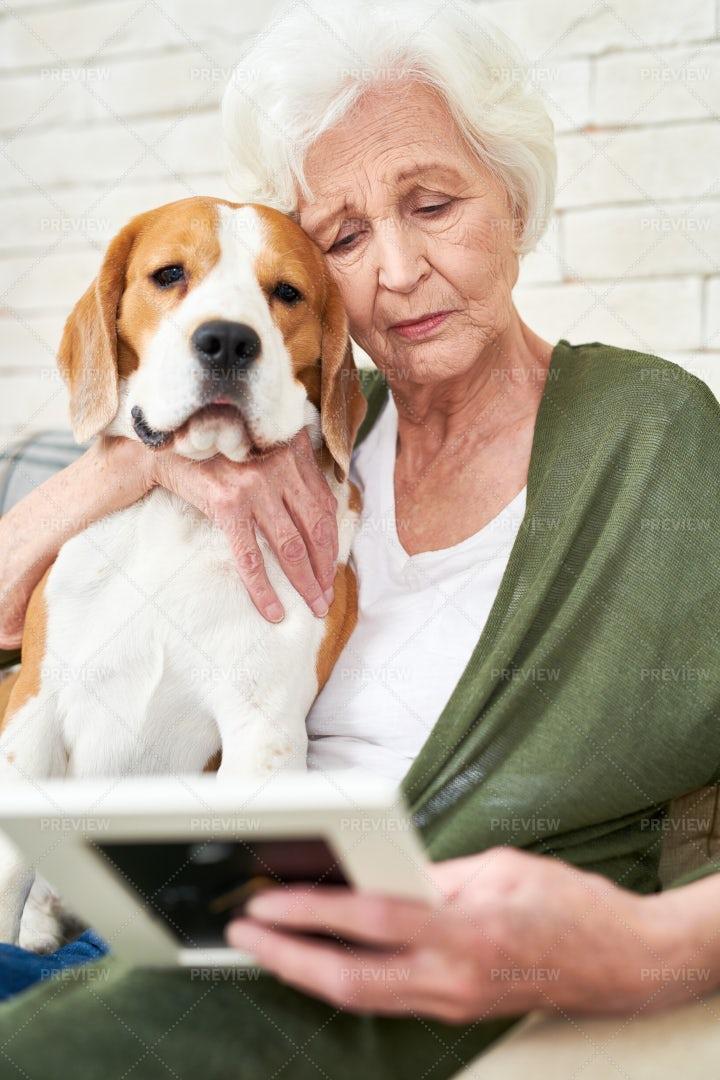 Sad Senior Woman Hugging Dog: Stock Photos