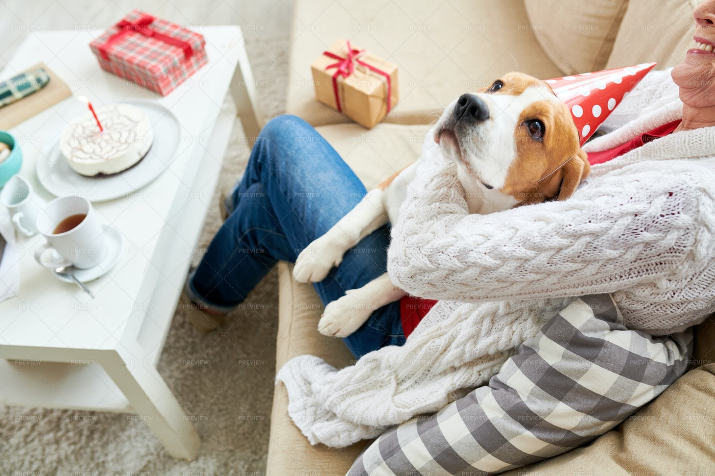 Happy Dog With Senior Owner: Stock Photos