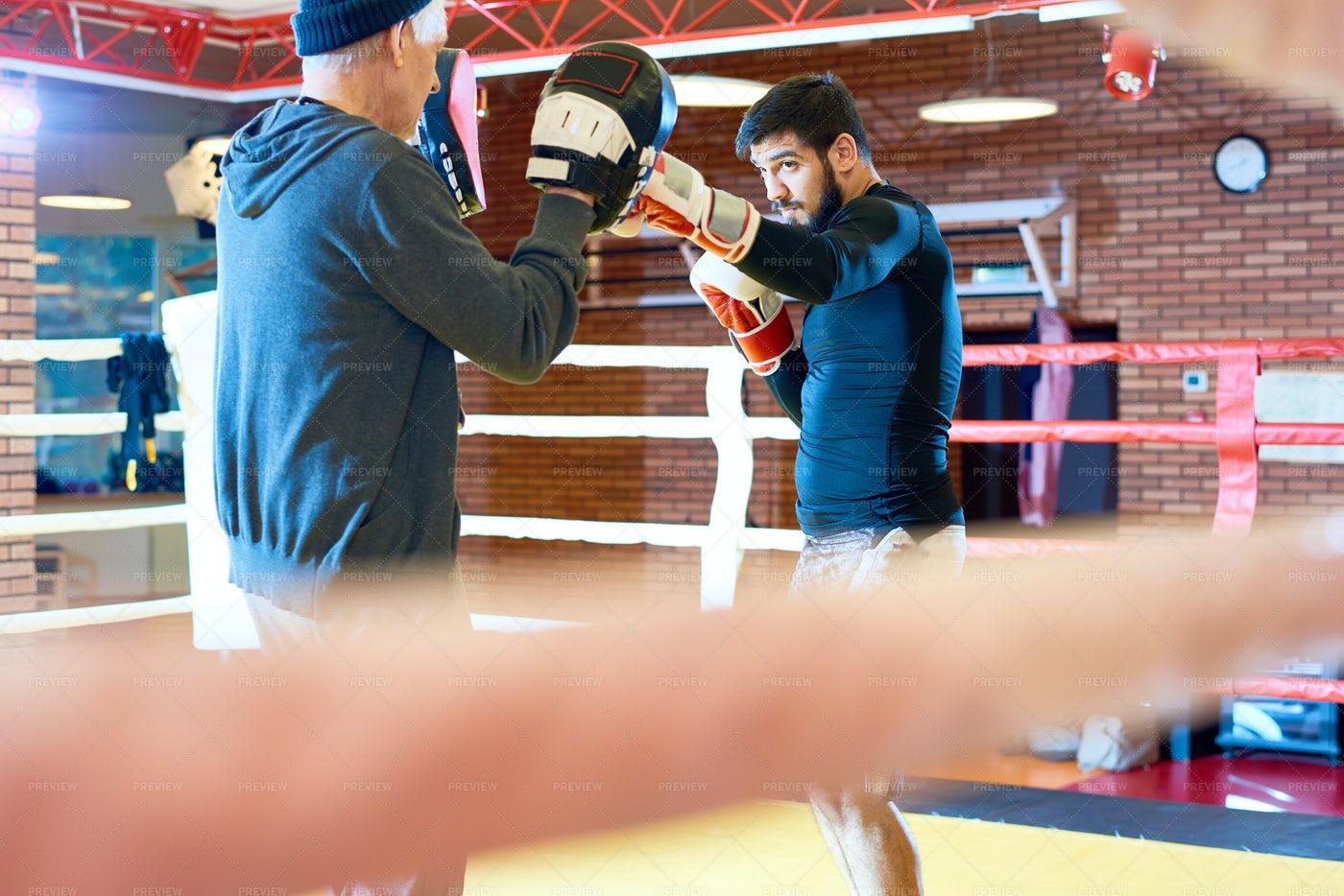 Tough Boxer Training In Ring: Stock Photos