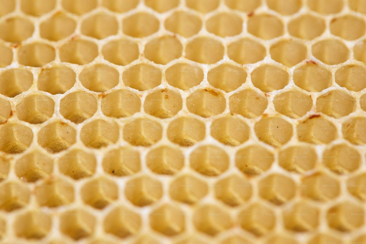 Honeycomb Cells Macro: Stock Photos