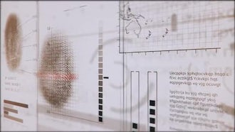 3D Fingerprints Interface: Motion Graphics