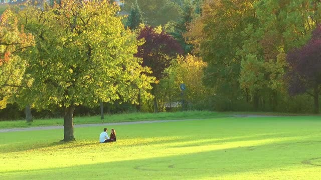 Lovers In The Park: Stock Video