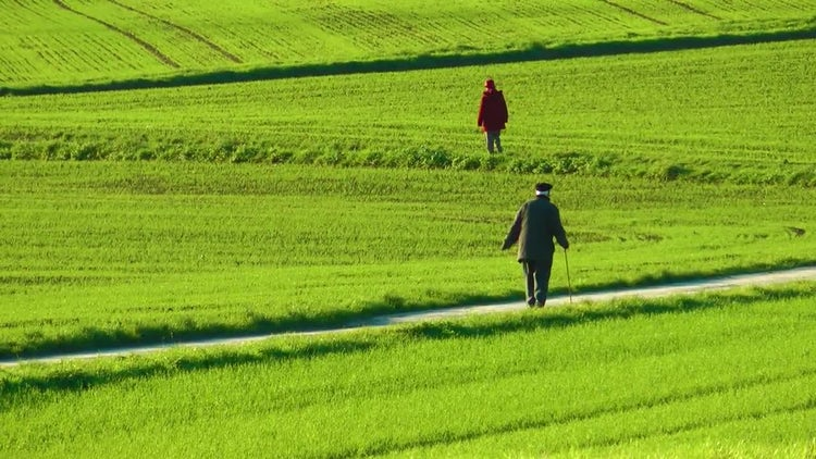 Old Man And Woman In Green Field: Stock Video