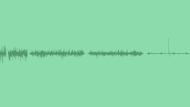Grasshopper & Cricket SFX: Sound Effects