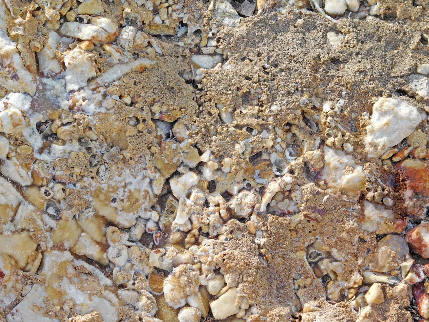 Stone Texture In The Garden: Stock Photos