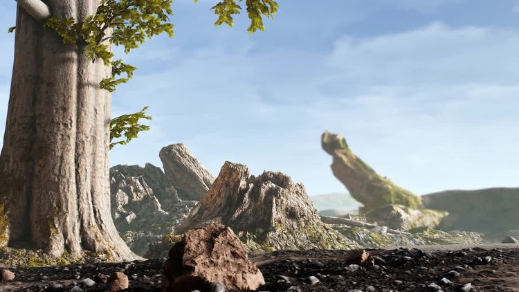 Wild Life In The Desert: Stock Motion Graphics