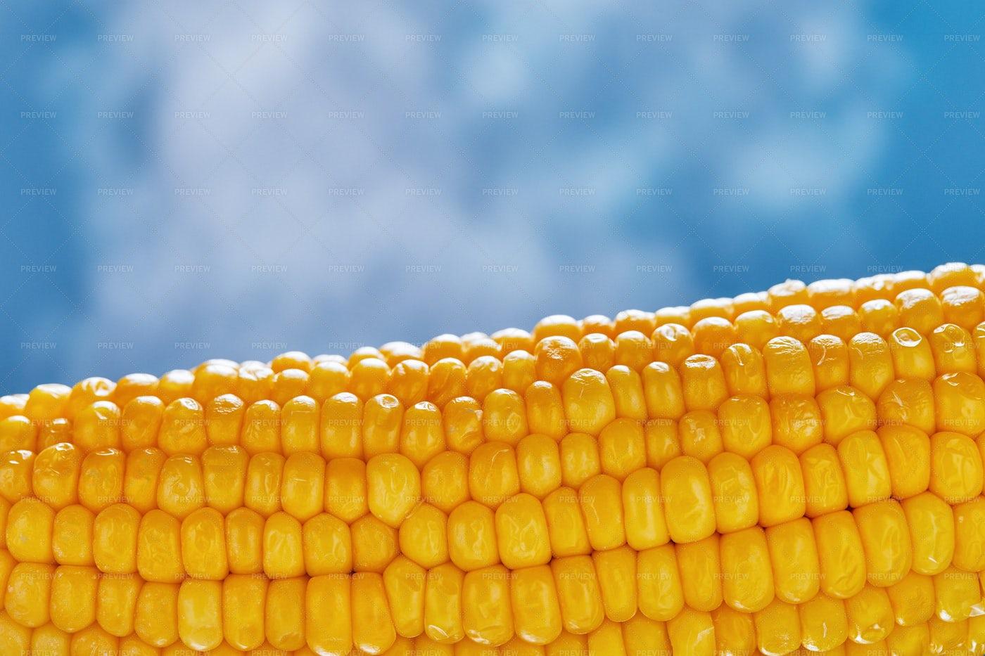 Steam Rising Off Corn: Stock Photos