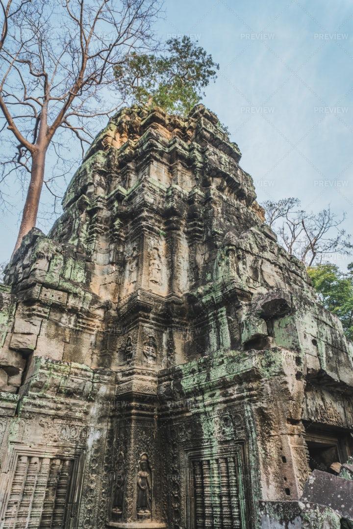 Angkor Temple, Ta Prohm: Stock Photos