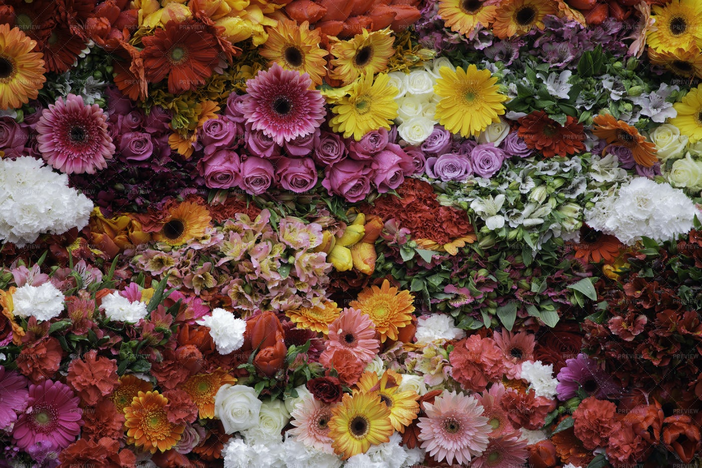 Bouquet Of Colorful Flowers: Stock Photos