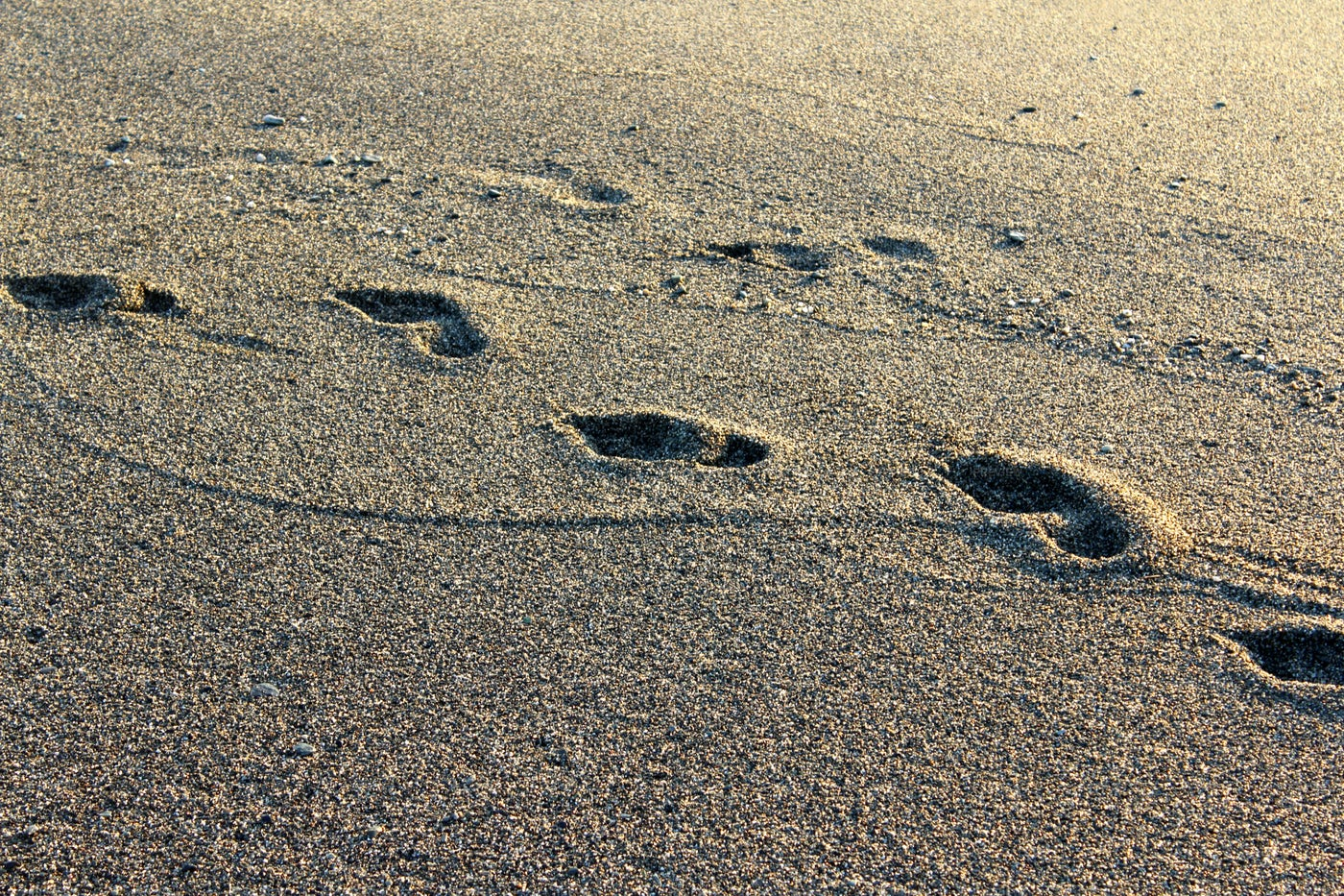 Footsteps On Sand: Stock Photos