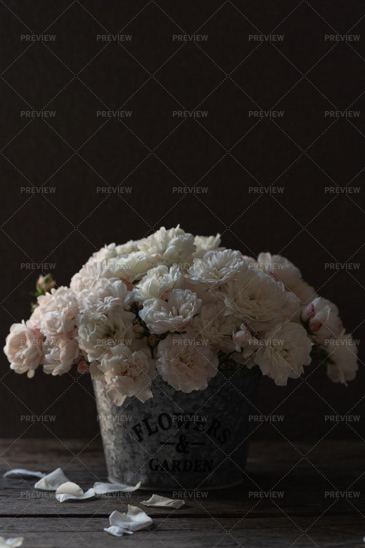 Bucket Of White Roses: Stock Photos