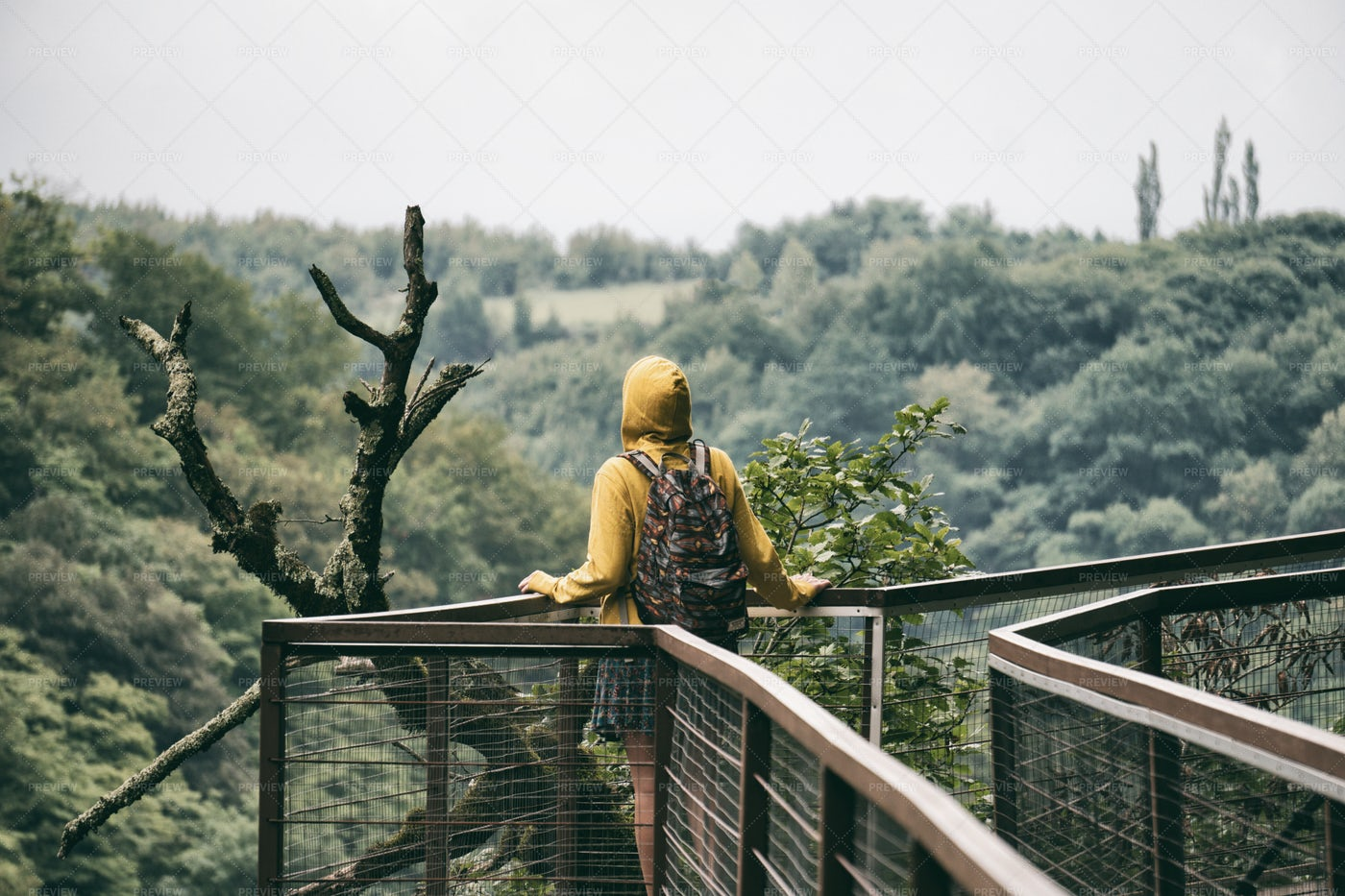 Hiker In Nature: Stock Photos