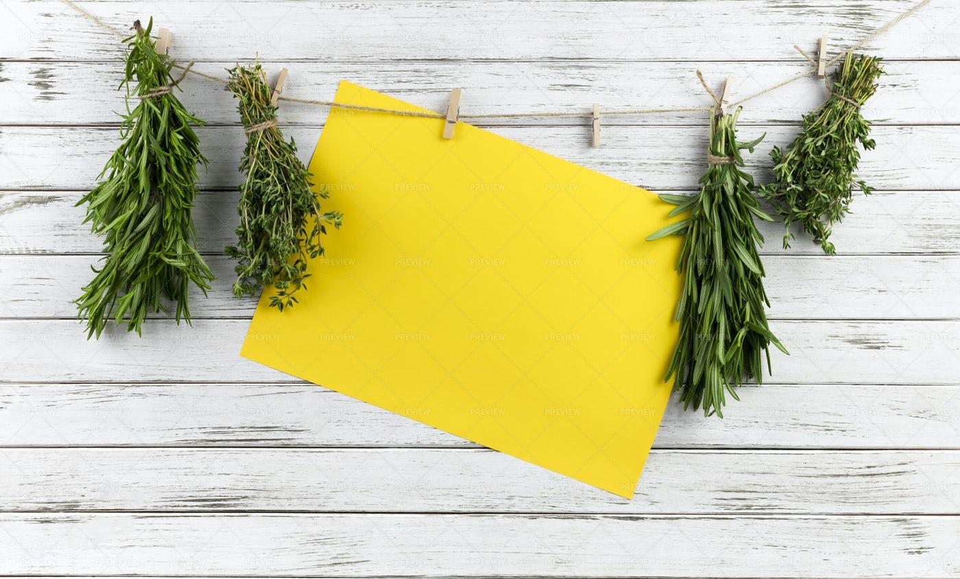 Hanging Herbs: Stock Photos