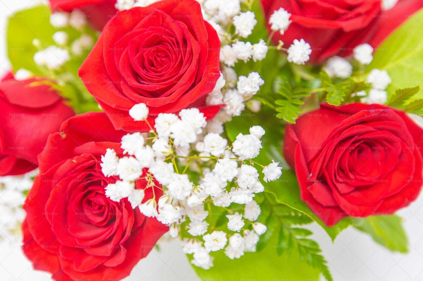 Valentine's Day Roses: Stock Photos