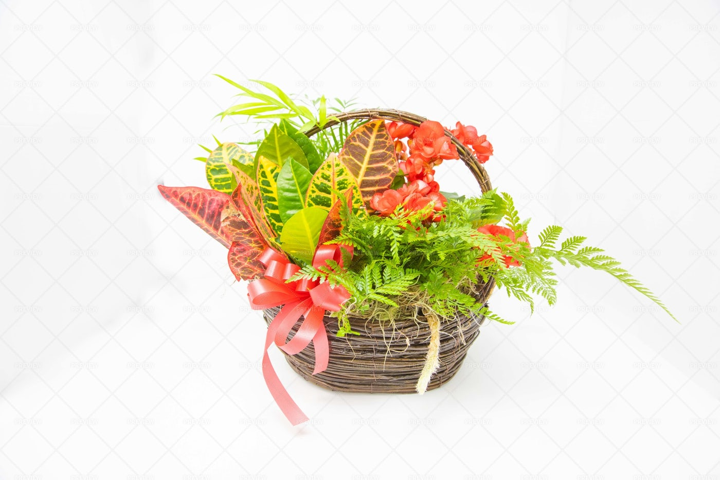 Flower Basket: Stock Photos