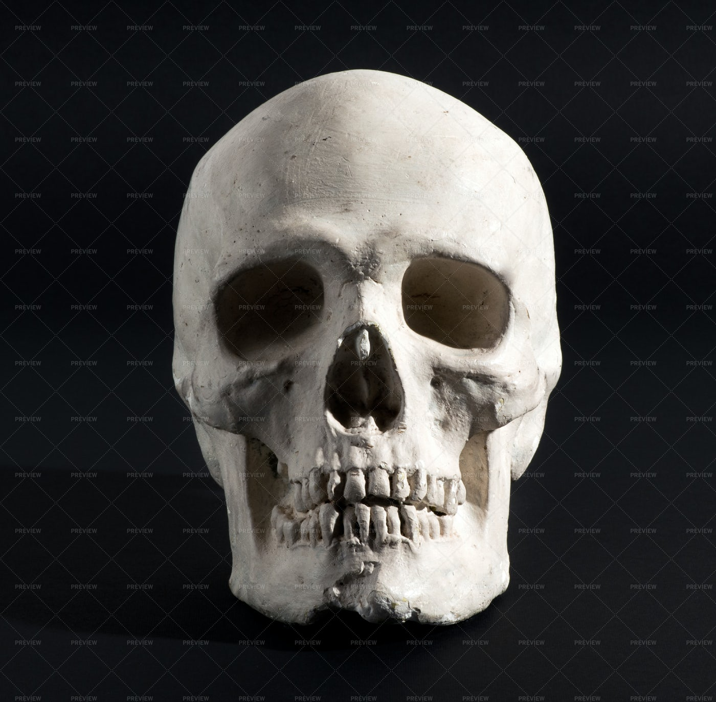 Human Skull On A Black: Stock Photos