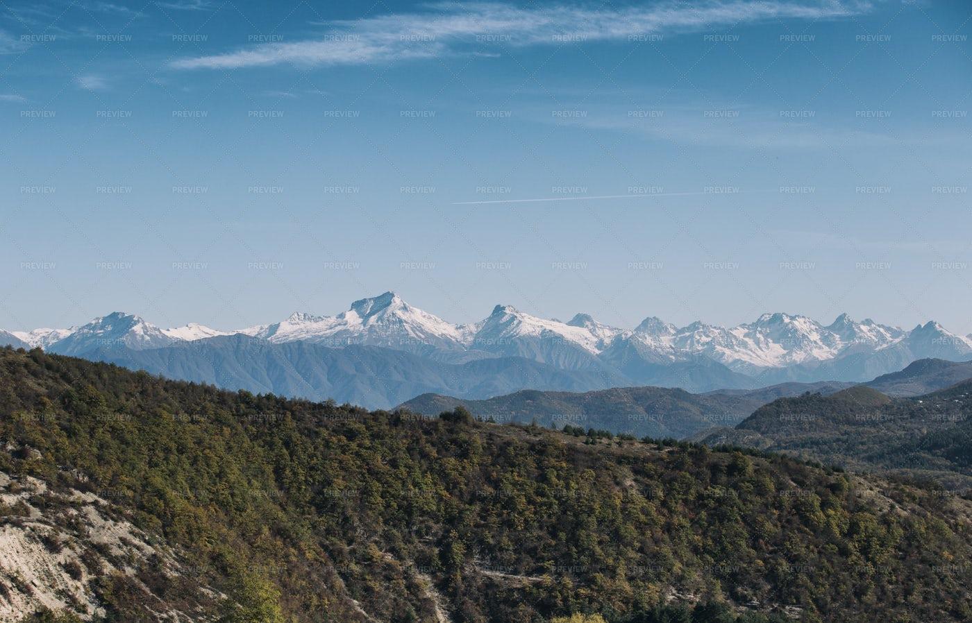 High Altitude Mountain Forest: Stock Photos