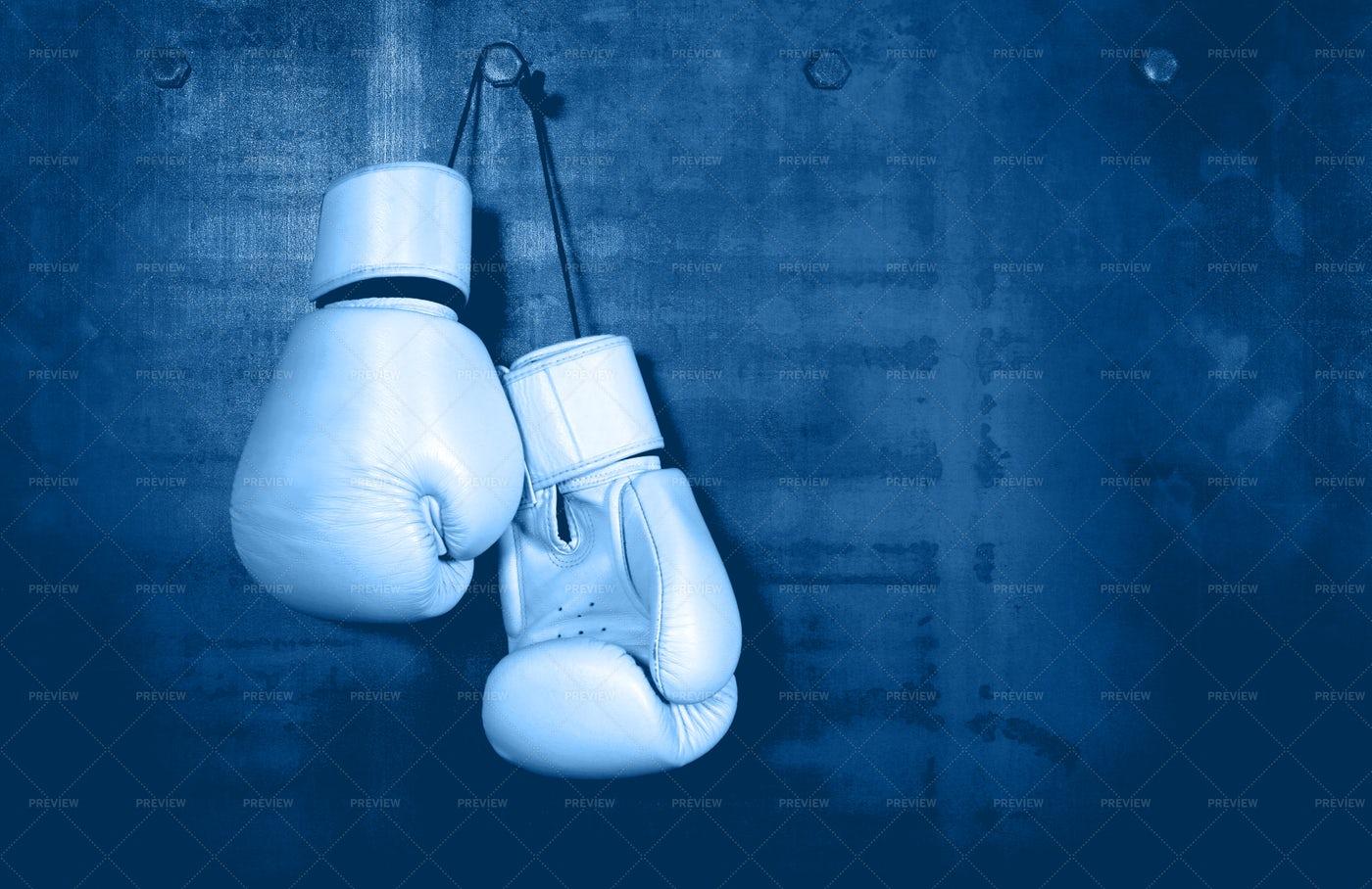 White Leather Boxing Gloves: Stock Photos