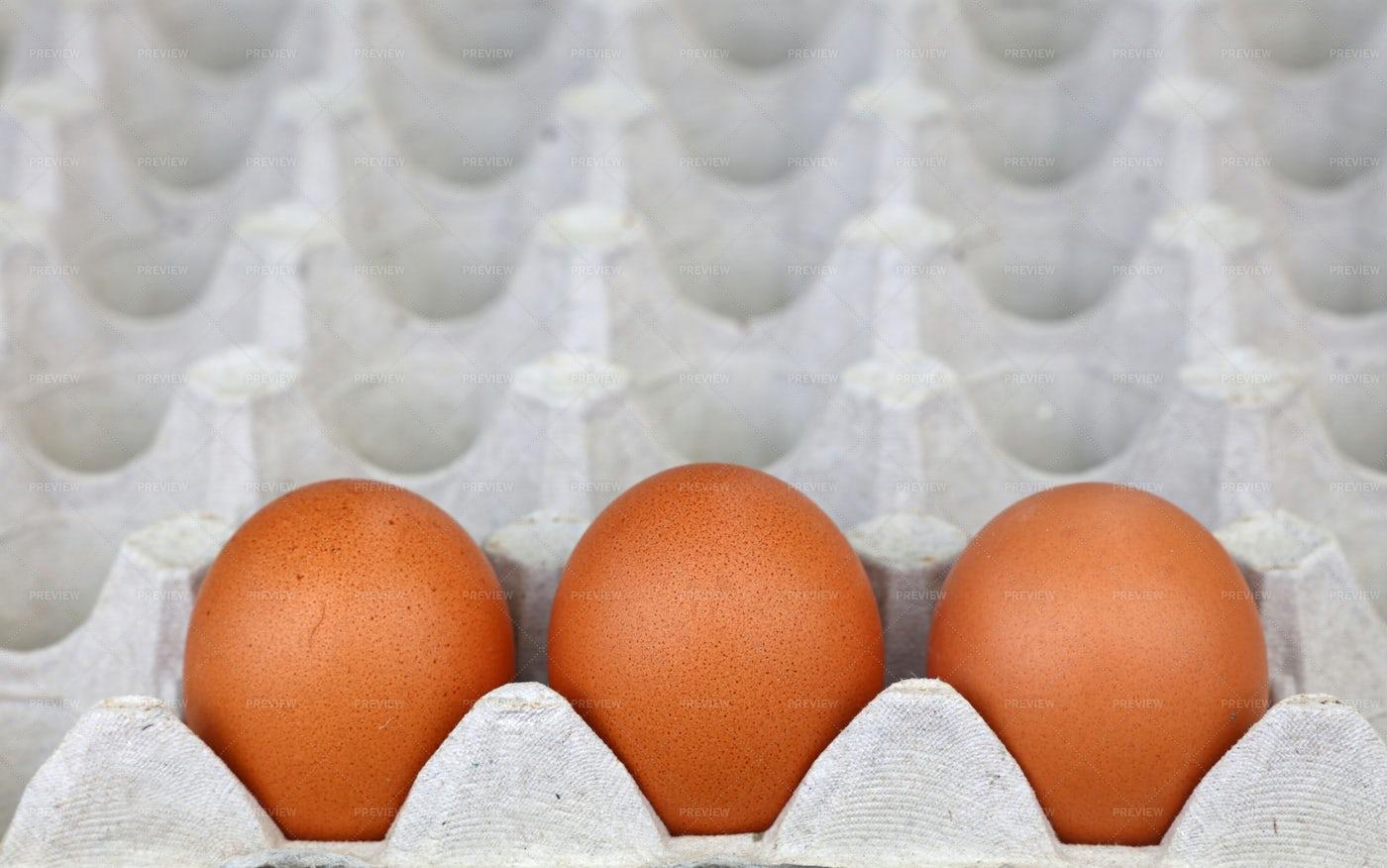 Three Eggs In A Carton: Stock Photos
