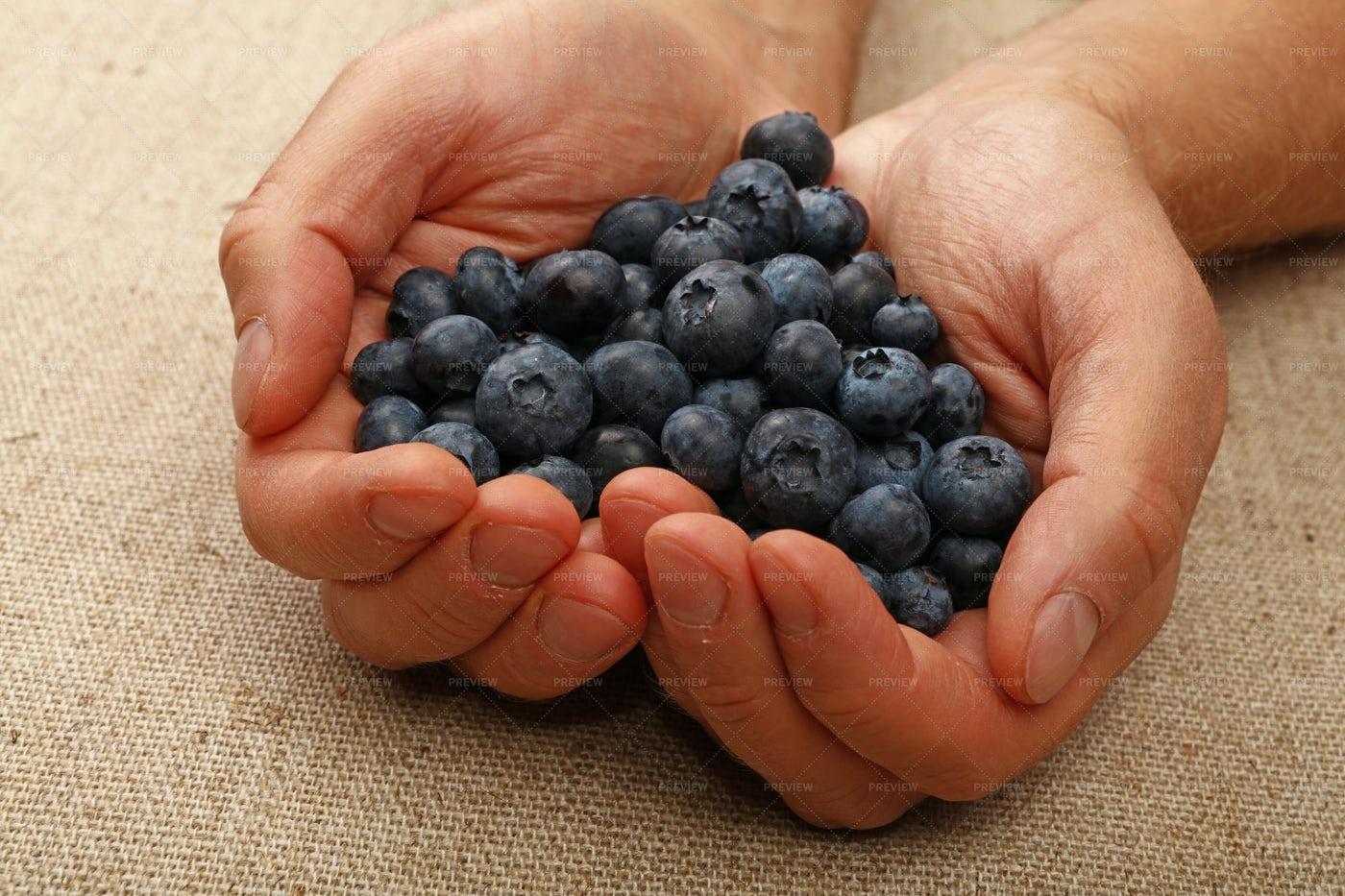Handful Of Blueberries: Stock Photos
