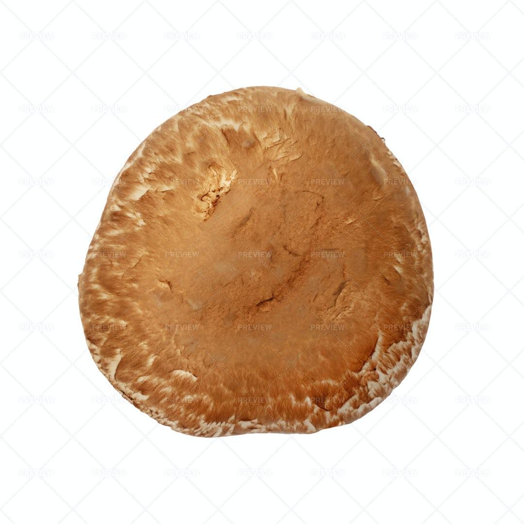 Brown Portobello Mushroom: Stock Photos
