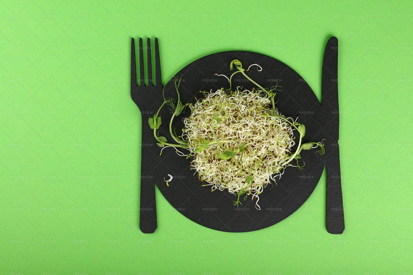 Microgreen Salad Sprouts: Stock Photos