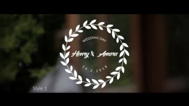 15 wedding Titles (3 Styles ): After Effects Templates