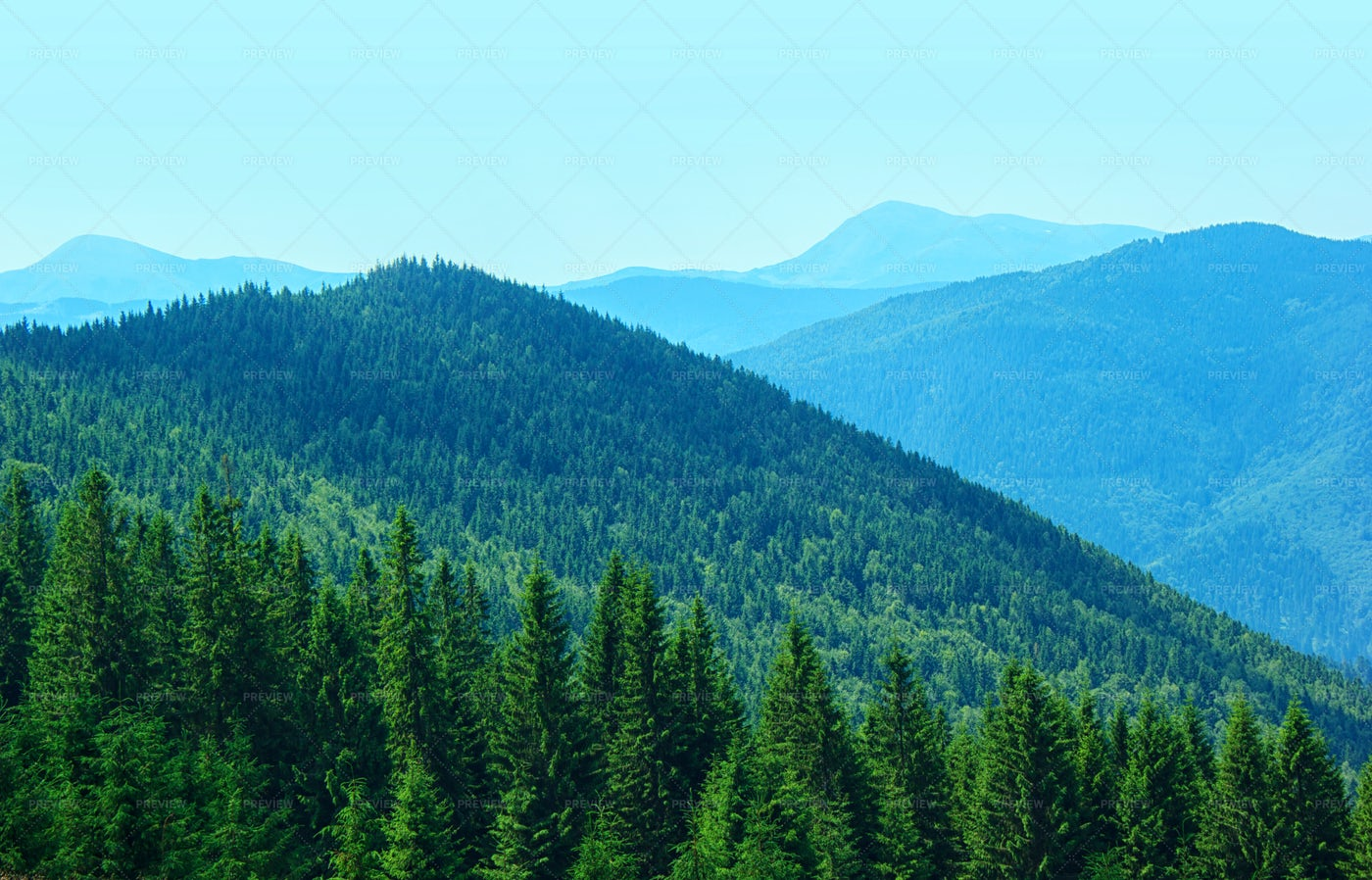 Forest-Covered Mountains: Stock Photos