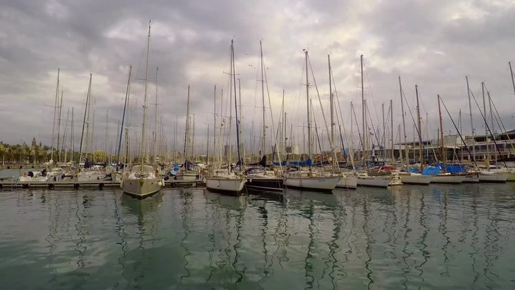 Sails In The Harbor: Stock Video