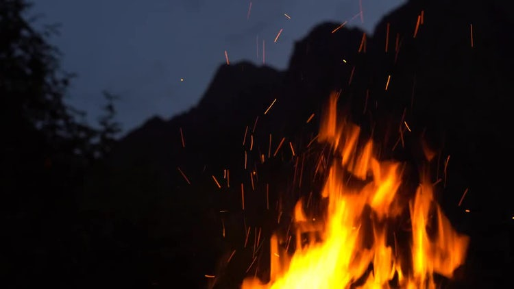 Fire In Nature: Stock Video