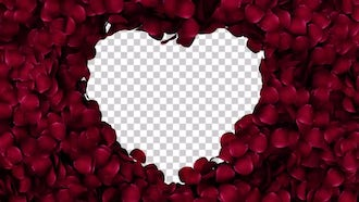 Rose Petals in a Heart with Alpha Channel: Motion Graphics