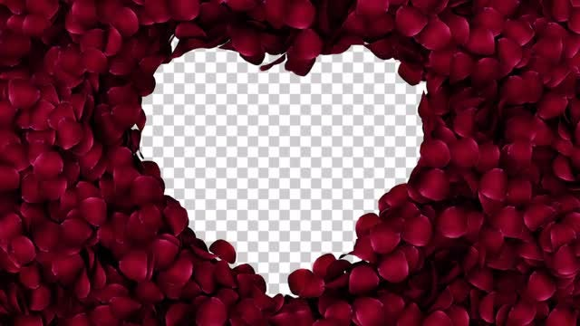 Rose Petals In A Heart With Alpha Channel: Stock Motion Graphics