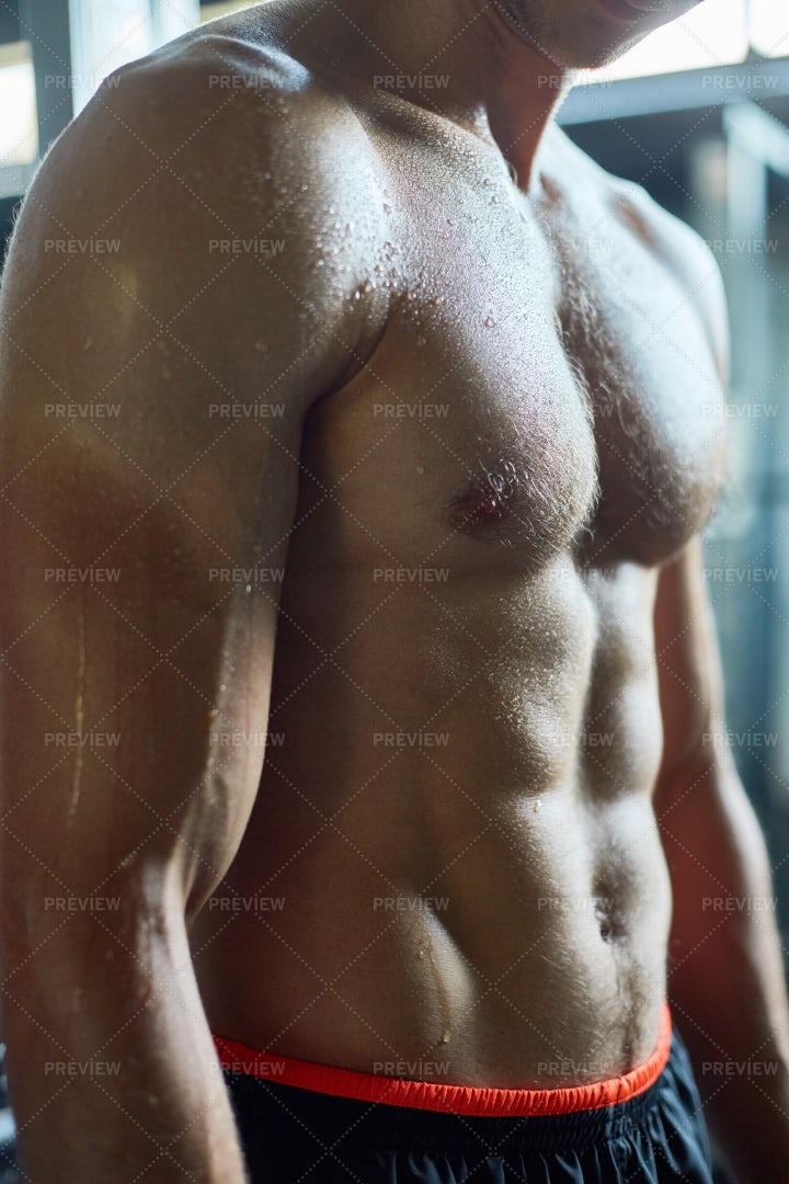 Muscular Bare Torso: Stock Photos