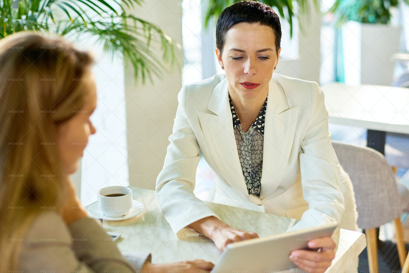 Successful Business Woman Meeting...: Stock Photos