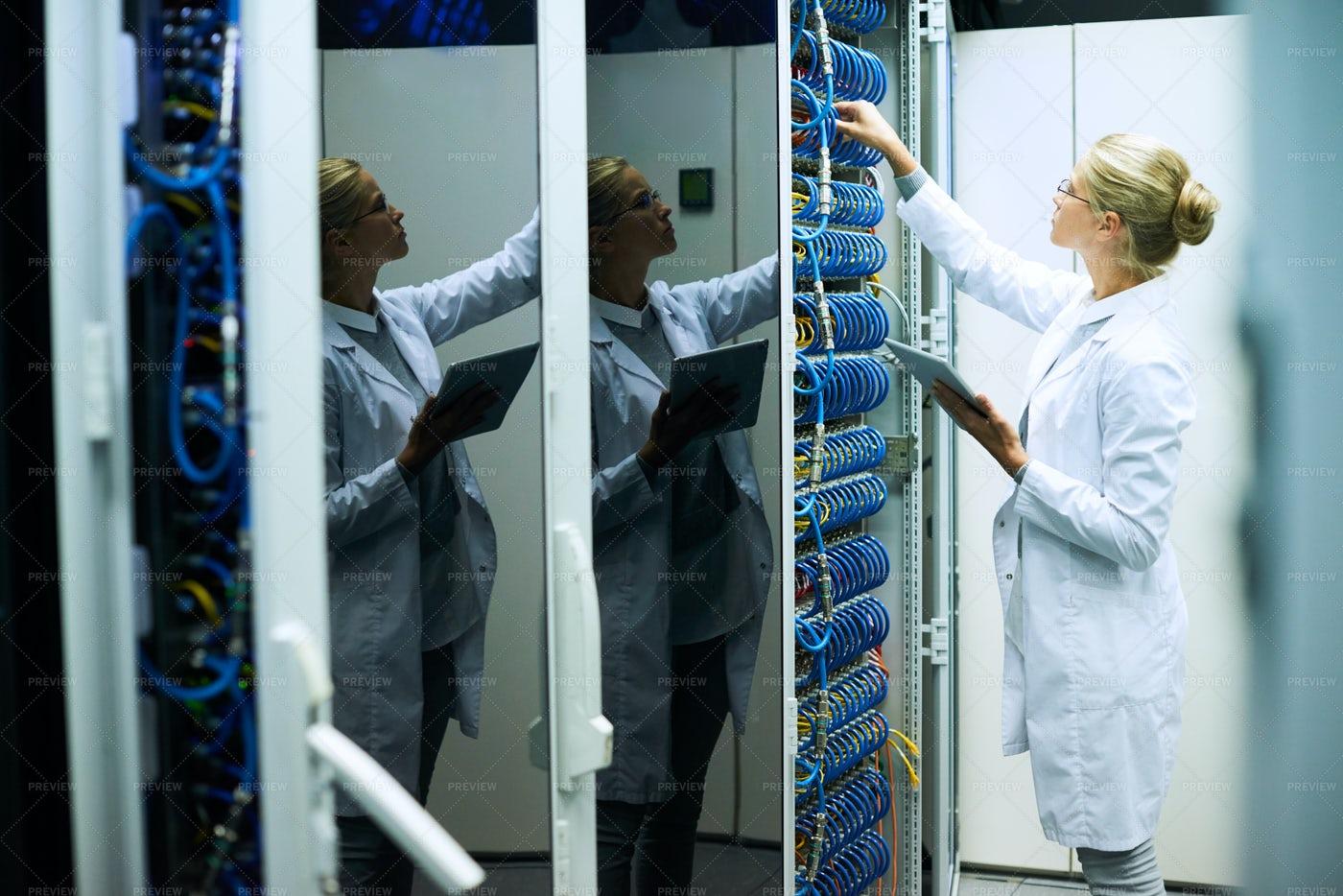 Woman In Computer Center: Stock Photos