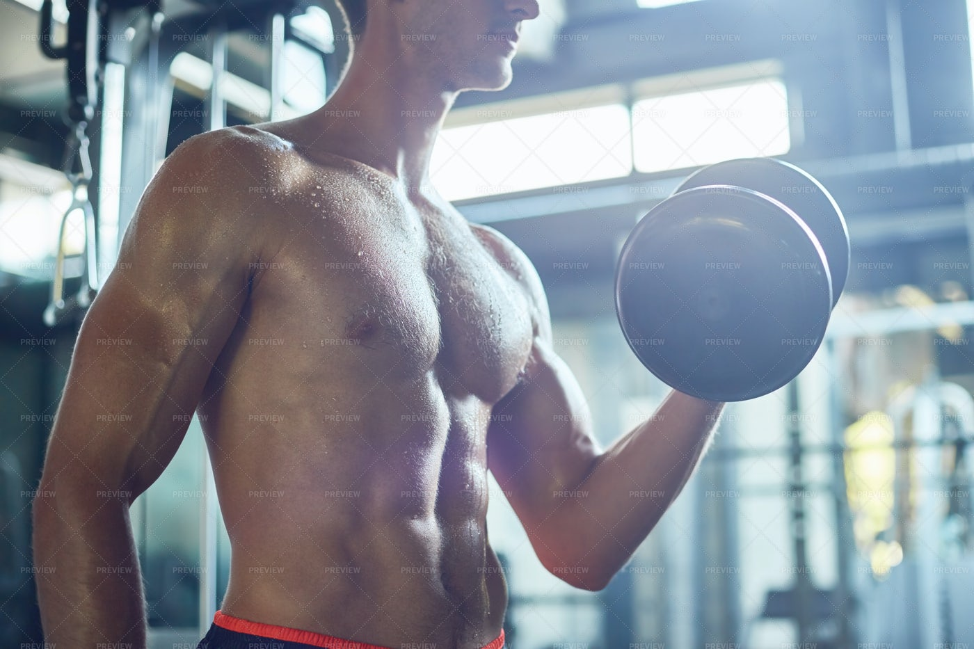 Building Biceps With Dumbbells: Stock Photos
