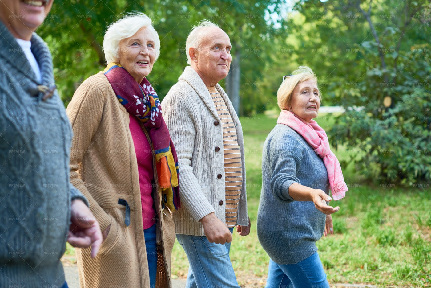 Walking At Park With Friends: Stock Photos