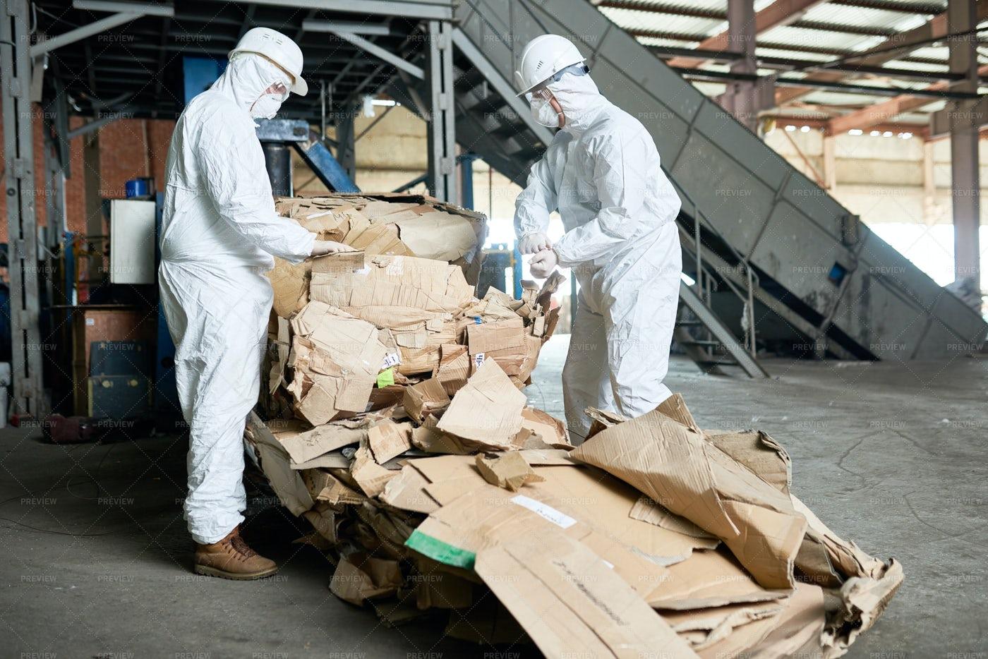 Workers In Hazmat Suits Sorting...: Stock Photos