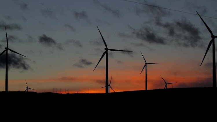 Wind Farm Outline At Sunset: Stock Video