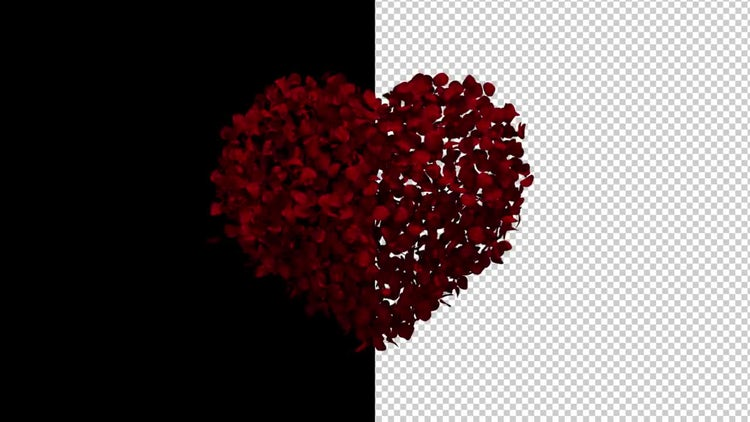 Heart Animation of Rose Petals: Motion Graphics