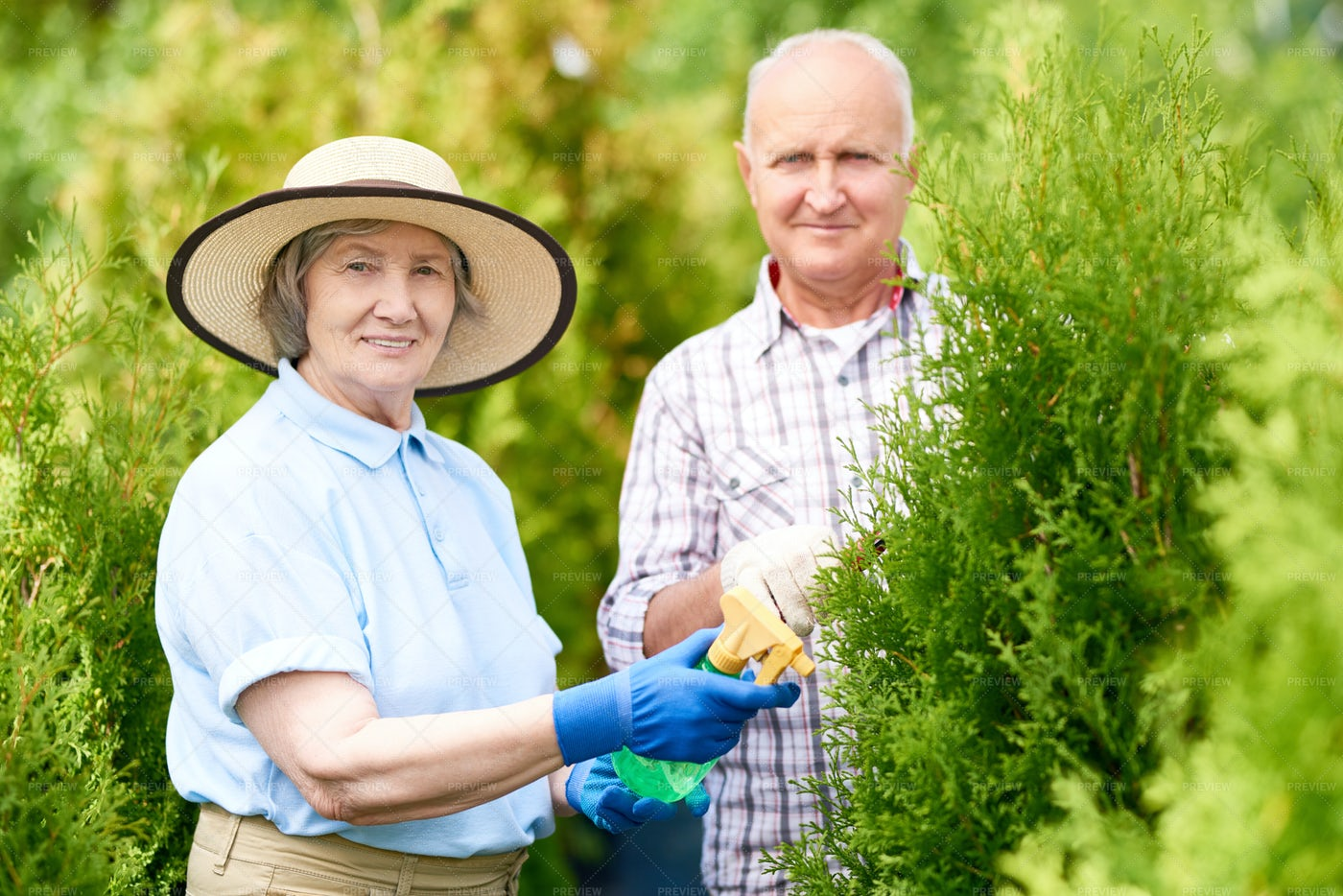 Happy Senior Couple Working In...: Stock Photos
