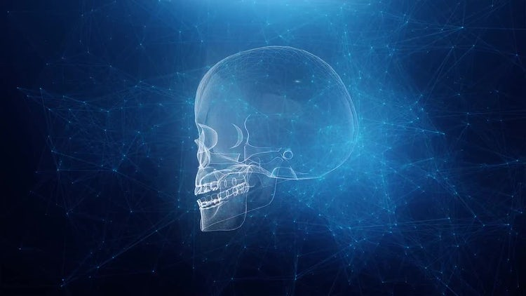 Skull On A Blue Plexus Webbed Background: Motion Graphics