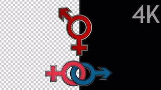 Female And Male Symbols: Motion Graphics